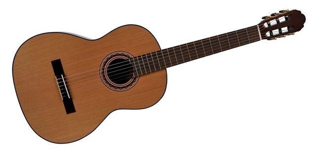 Klasična kitara VSG Pro Andalus 4/4